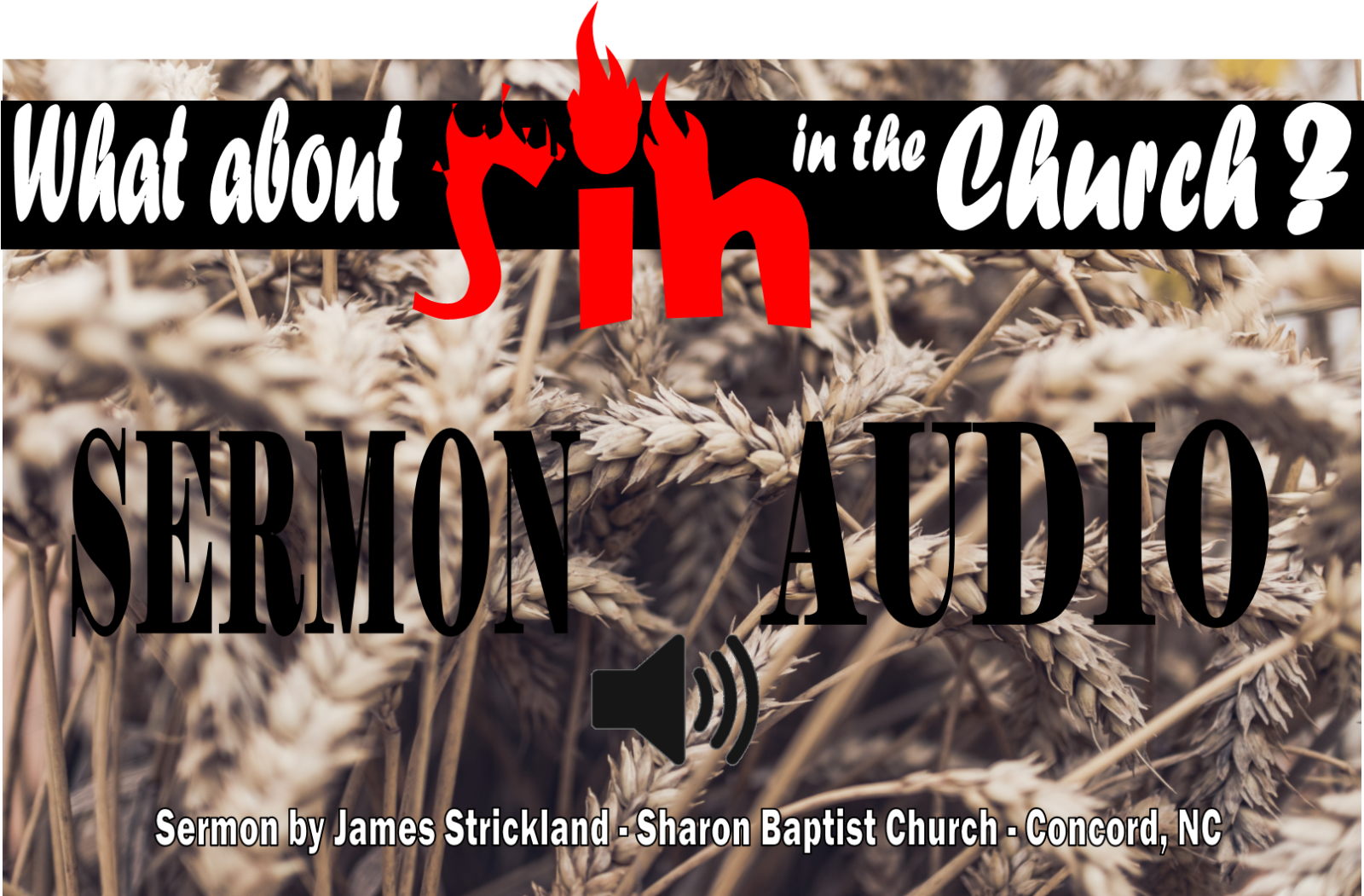 What about sin in the church? - Sermon Audio