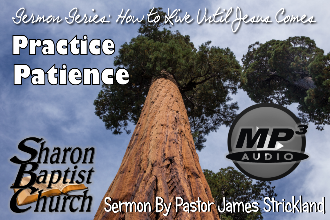 How to Live Until Jesus Comes - Practice Patience