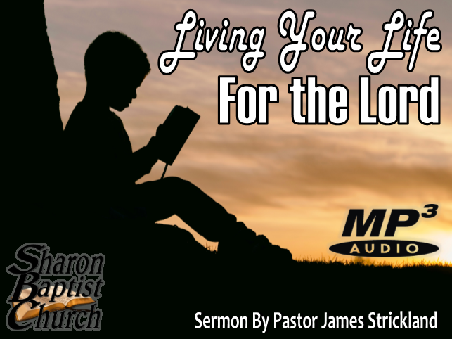 Living your Life for the Lord Audio MP3